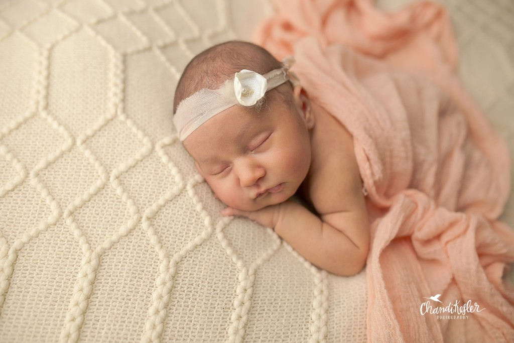 Champaign IL Newborn Photographer | Newborn Girl Session