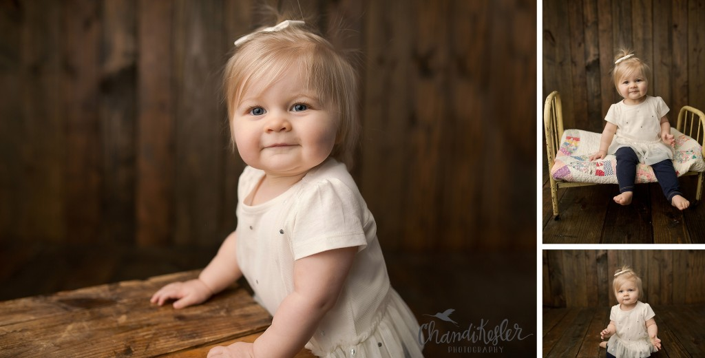 Champaign Urbana IL Photographer | Chandi Kesler Photography | 1 year photo session ideas