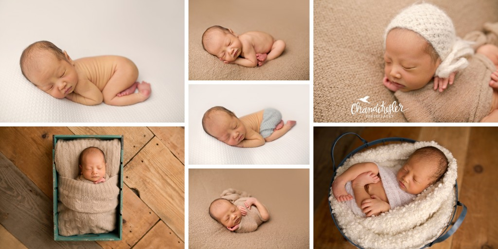 Mahomet IL Newborn Photographer | Champaign IL Photographer