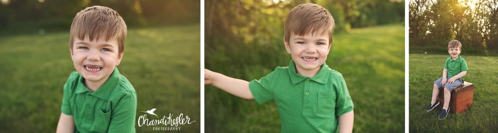 3 year old poses | Chandi Kesler Photography | Bloomington IL Photographer