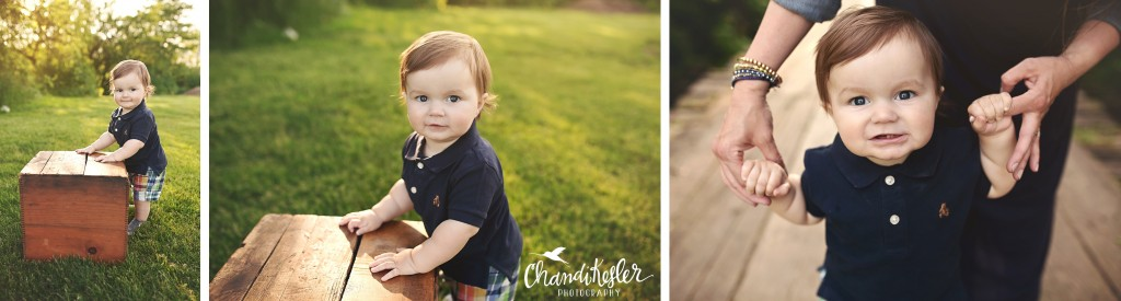 1 year old session | Chandi Kesler Photography | Bloomington IL Photographer