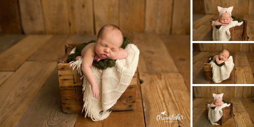Bloomington IL Newborn Photographer | Pontiac IL Photographer
