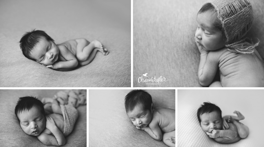 Decatur IL Newborn Photographer | Chandi Kesler Photography | Pontiac IL Photographer