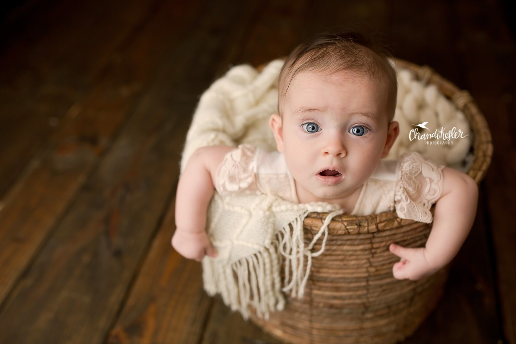 chandi kesler photography | Bloomington IL photographer | 5 month baby session