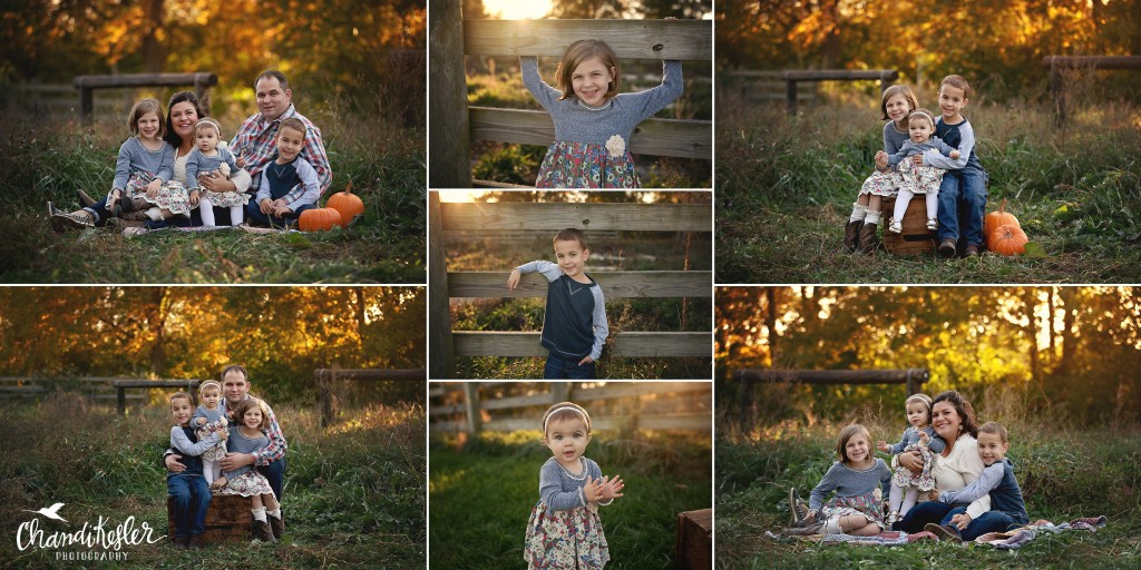 Lexington IL Photographer | Chandi Kesler Photography | Bloomington IL Photographer