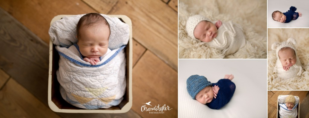 Newborn Photographer Central IL | Bloomington IL Photographer | Chandi Kesler Photography