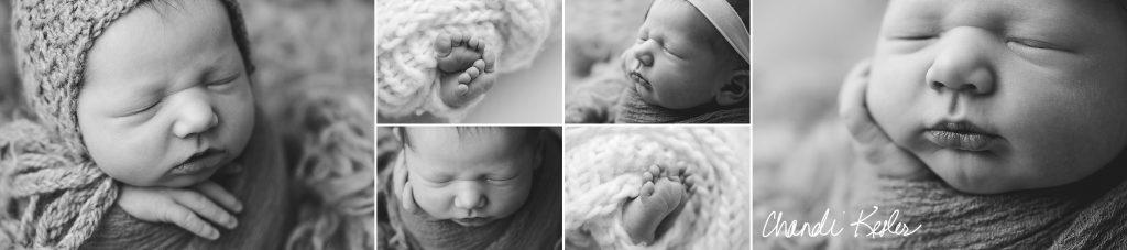 Urbana IL Newborn Photographer | Chandi Kesler | Decatur IL Photographer