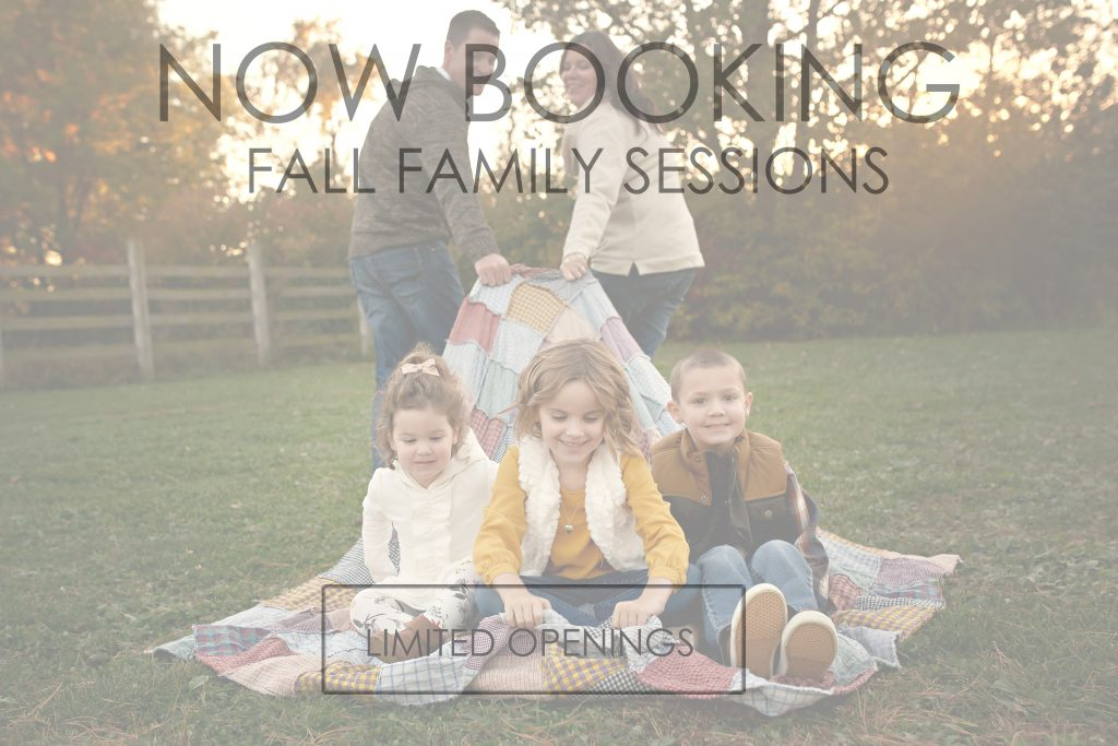 Bloomington IL Photographer   Fall Pictures   Chandi Kesler Photography