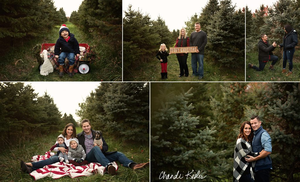 Bloomington IL Tree Farm Pictures | Chandi Kesler Photography