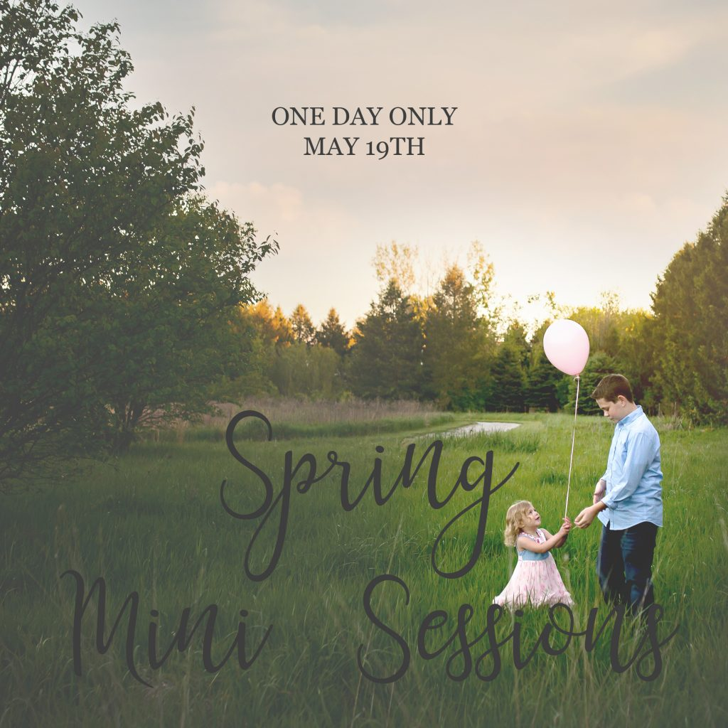 Spring Mini Sessions | Bloomington IL Photographer