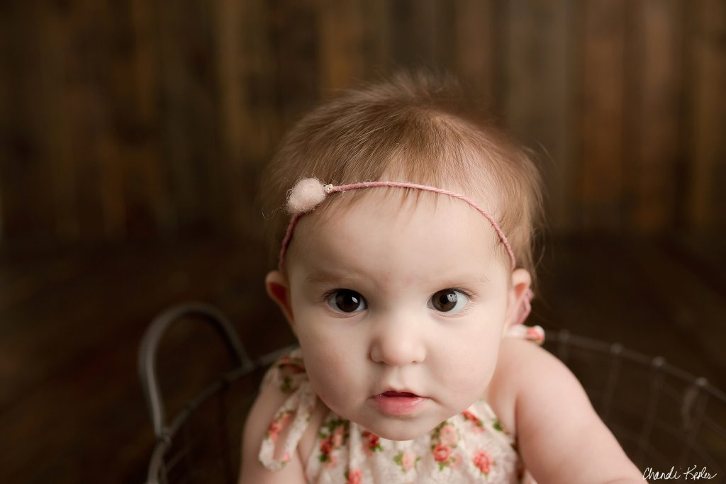Cissna Park IL Baby Photographer | Chandi Kesler Photography
