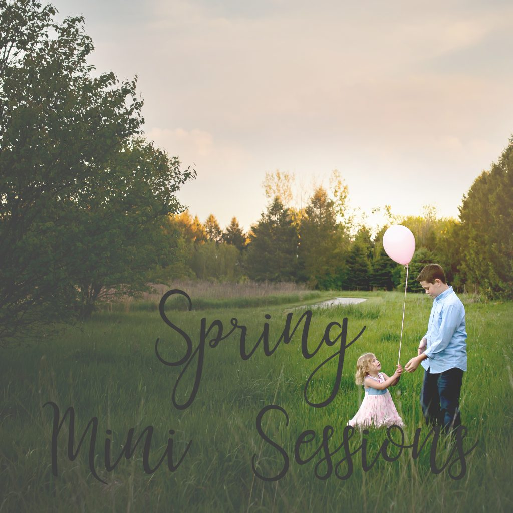 Spring Mini Sessions | Chandi Kesler Photography | Bloomington IL Photographer