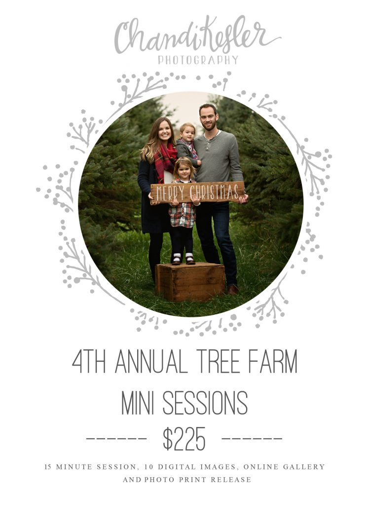 Bloomington IL Tree Farm Photo Session | Chandi Kesler Photography