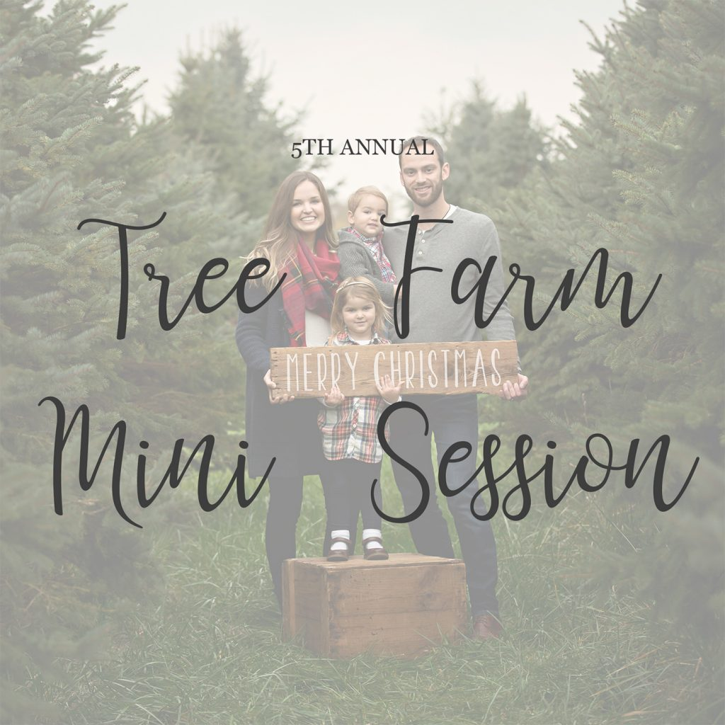 Tree Farm Mini Sessions Bloomington IL | Chandi Kesler Photography